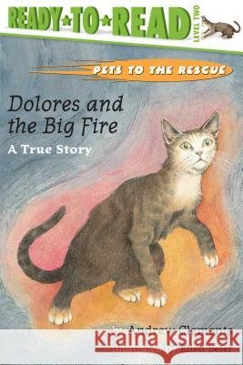 Dolores and the Big Fire: Dolores and the Big Fire Andrew Clements Ellen Beier 9780689834400 Aladdin Paperbacks
