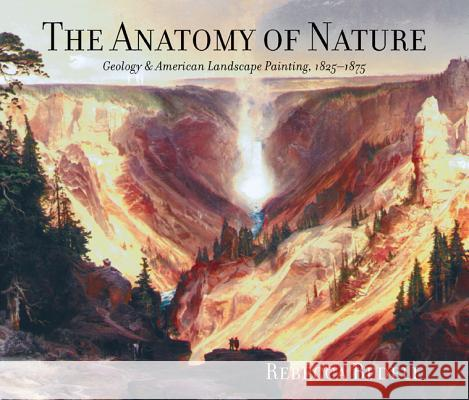 The Anatomy of Nature : Geology and American Landscape Painting, 1825-1875 Rebecca Bailey Bedell 9780691102917