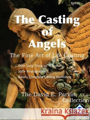 The Casting of Angels A L I David E Parvin   9780692454732 Teaching Press