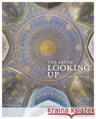 The Art of Looking Up Catherine McCormack 9780711242173