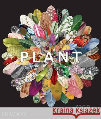 Plant: Exploring the Botanical World Phaidon 9780714871486