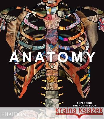 Anatomy: Exploring the Human Body Phaidon Press 9780714879888