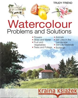 Watercolour Problems and Solutions: A Trouble-Shooting Handbook Trudy Friend 9780715314579