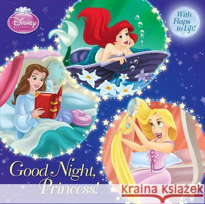 Good Night, Princess! Andrea Posner-Sanchez Random House Disney 9780736428514