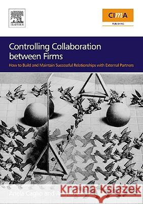 Controlling Collaboration Between Firms: How to Build and Maintain Successful Relationships with External Partners A Ditillo 9780750681315 0