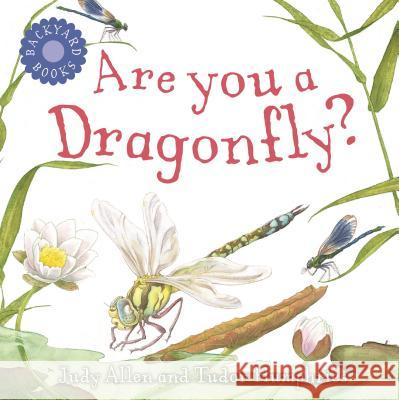 Are You a Dragonfly? Judy Allen Tudor Humphries 9780753458051