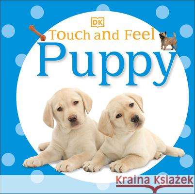Touch and Feel: Puppy DK Publishing 9780756691660