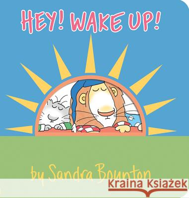 Hey Wake Up Sandra Boynton 9780761119760
