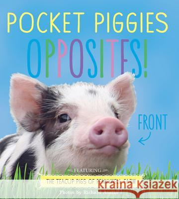 Pocket Piggies Opposites!: Featuring the Teacup Pigs of Pennywell Farm Richard Austin 9780761185482