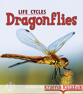 Dragonflies Robin Nelson 9780761341048 Lerner Classroom