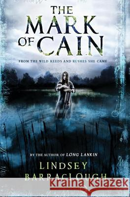 The Mark of Cain Lindsey Barraclough 9780763678647