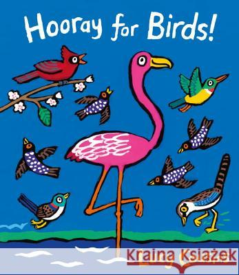 Hooray for Birds! Lucy Cousins 9780763692650