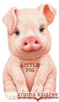 Little Pig L. Rigo 9780764163555