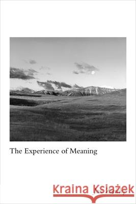 The Experience of Meaning Jan Zwicky 9780773557420