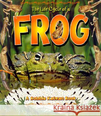The Life Cycle of a Frog Bobbie Kalman Kathryn Smithyman Bonna Rouse 9780778706816