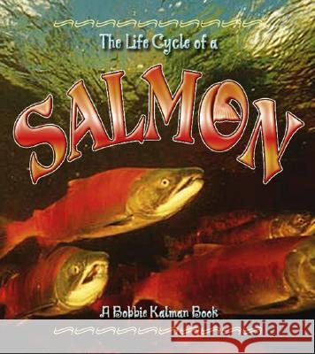 The Life Cycle of the Salmon Bobbie Kalman Rebecca Sjonger 9780778707059