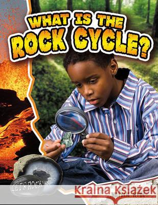 What Is the Rock Cycle? Natalie Hyde 9780778772361