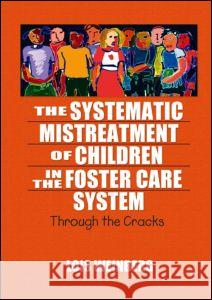 The Systematic Mistreatment of Children in the Foster Care System : Through the Cracks Lois Weinberg 9780789023933