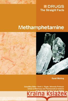 Methamphetamine David J. Triggle Randi Mehling 9780791095324