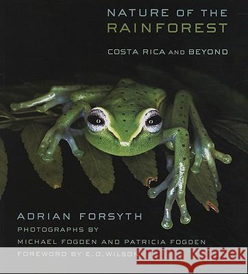 Nature of the Rainforest: Costa Rica and Beyond Adrian Forsyth 9780801474750