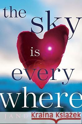The Sky Is Everywhere Jandy Nelson 9780803734951