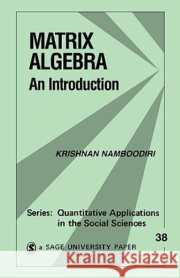 Matrix Algebra: An Introduction Krishnan Namboodiri Richard G. Niemi 9780803920521
