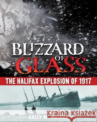 Blizzard of Glass: The Halifax Explosion of 1917 Sally M. Walker 9780805089455