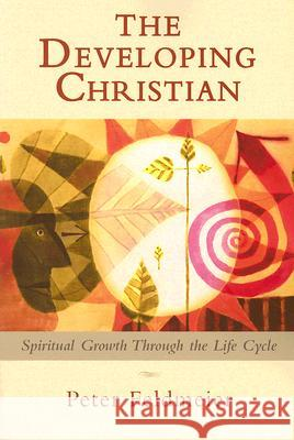 The Developing Christian: Spiritual Growth Through the Life Cycle Peter Feldmeier 9780809144389