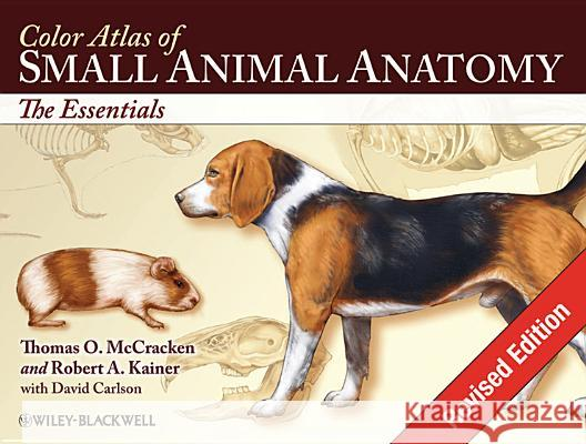 Color Atlas of Small Animal Anatomy: The Essentials Thomas O. Mccracken Robert J. Kainer 9780813816081