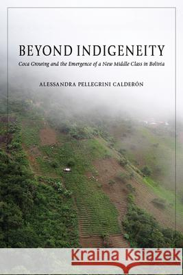 Beyond Indigeneity: Coca Growing and the Emergence of a New Middle Class in Bolivia Alessandra Pellegrin 9780816533107