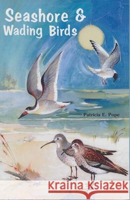 Seashores and Wading Birds Patricia Pope 9780820009032