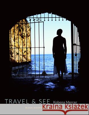 Travel & See: Black Diaspora Art Practices Since the 1980s Kobena Mercer 9780822360803 Duke University Press