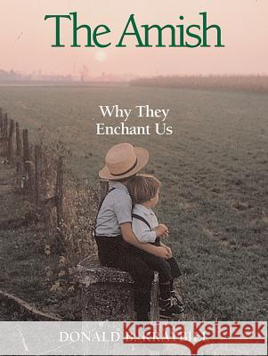 The Amish: Why They Enchant Us Donald B. Kraybill 9780836192414