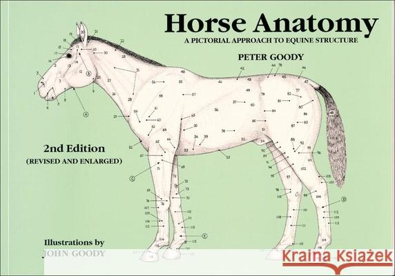Horse Anatomy: A Pictorial Approach to Equine Structure Peter C. Goody 9780851317694