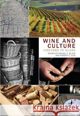 Wine and Culture: Vineyard to Glass Rachel E Black 9780857854018