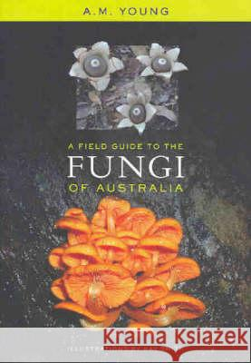 A Field Guide to the Fungi of Australia Tony Young A. M. Young 9780868407425