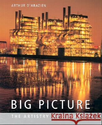 Big Picture : The Artistry of d'Arazien Arthur D'Arazien David Haberstich 9780873387514