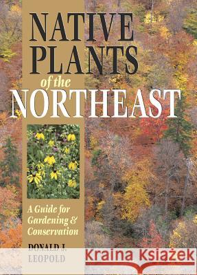Native Plants of the Northeast: A Guide for Gardening and Conservation Donald Leopold 9780881926736