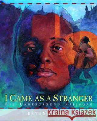 I Came as a Stranger: The Underground Railroad Bryan Prince 9780887766671
