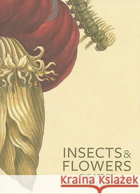 Insects and Flowers - The Art of Maria Sibylla Merian David Brafman Stephanie Schrader 9780892369294