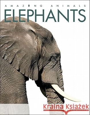 Amazing Animals: Elephants Kate Riggs 9780898125634 Creative Paperbacks