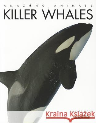 Killer Whales Kate Riggs 9780898126945 Creative Paperbacks