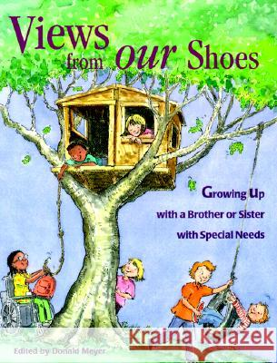 Views from Our Shoes: Growing Up with a Brother or Sister with Special Needs Donald Joseph Meyer Cary Pillo 9780933149984