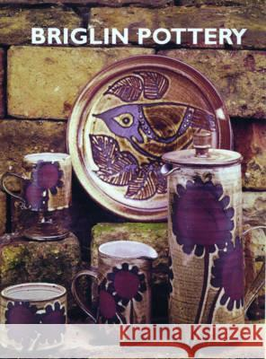 BRIGLIN POTTERY 1948-1990 Anthea Arnold 9780954192303