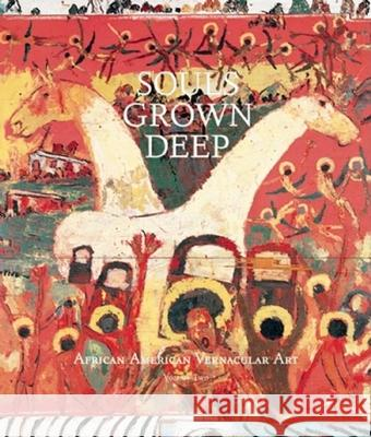 Souls Grown Deep Vol. 2: African American Vernacular Art William Arnett Paul Arnett Lowery Sims 9780965376631