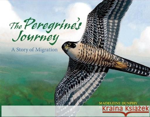 The Peregrine's Journey: A Story of Migration Madeleine Dunphy Kristin Kest 9780977753925
