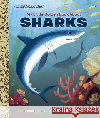 My Little Golden Book about Sharks Bonnie Bader 9781101930922