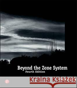 Beyond the Zone System Phil Davis 9781138135741