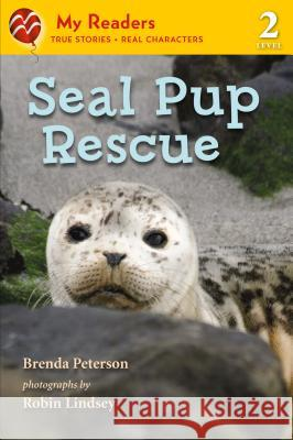 Seal Pup Rescue Brenda Peterson Robin Lindsey 9781250027764