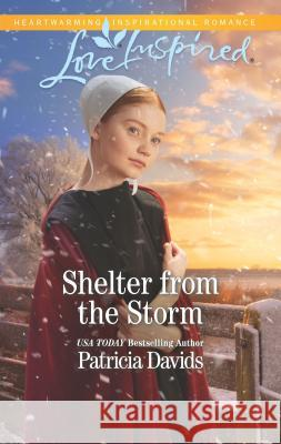 Shelter from the Storm Patricia Davids 9781335479372